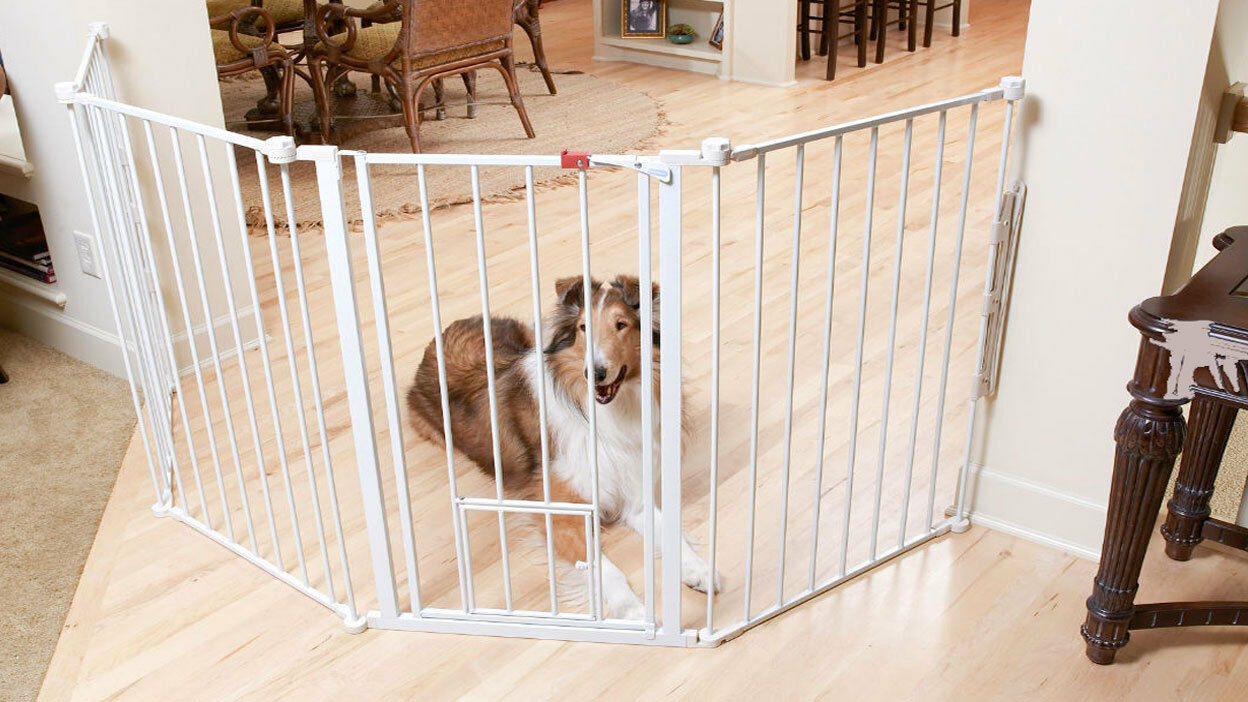 Baby Gate Your Pet