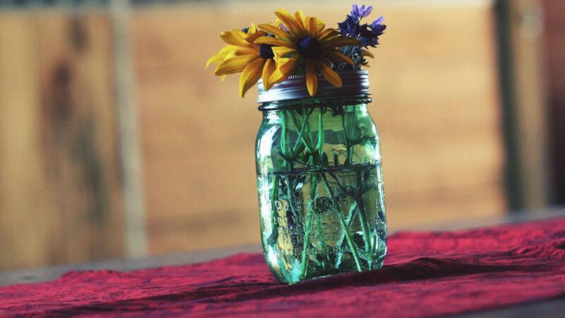 Image by Unsplash/Autumn Mott