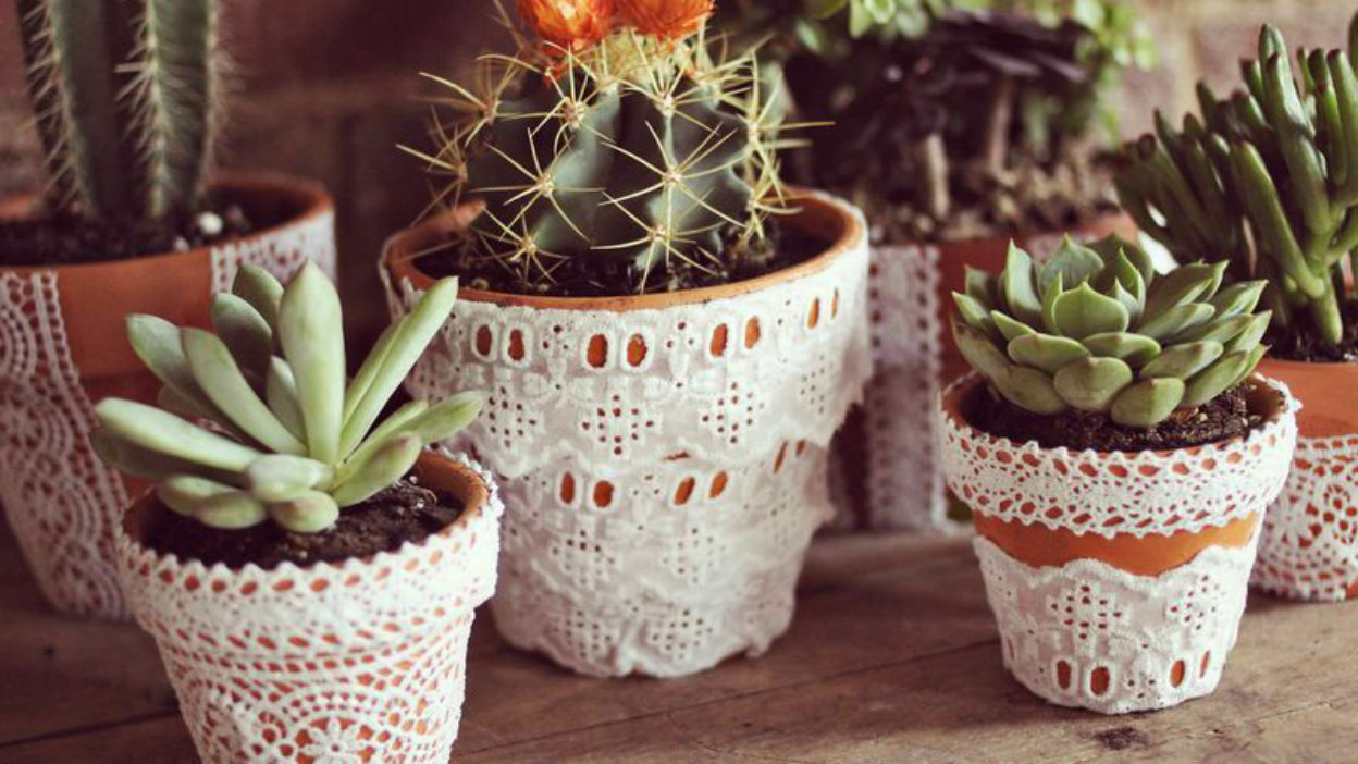 Lacey Trimmed Pots