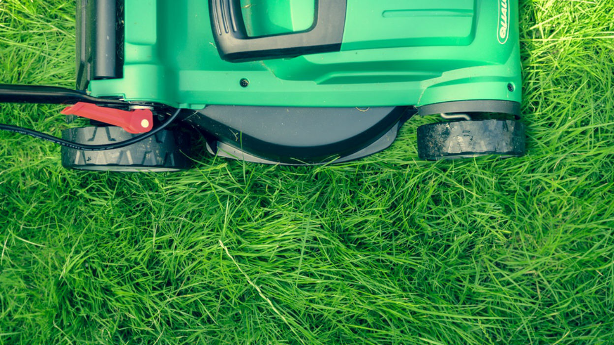 Lawnmowers, Strimmers And Leaf-Blowers