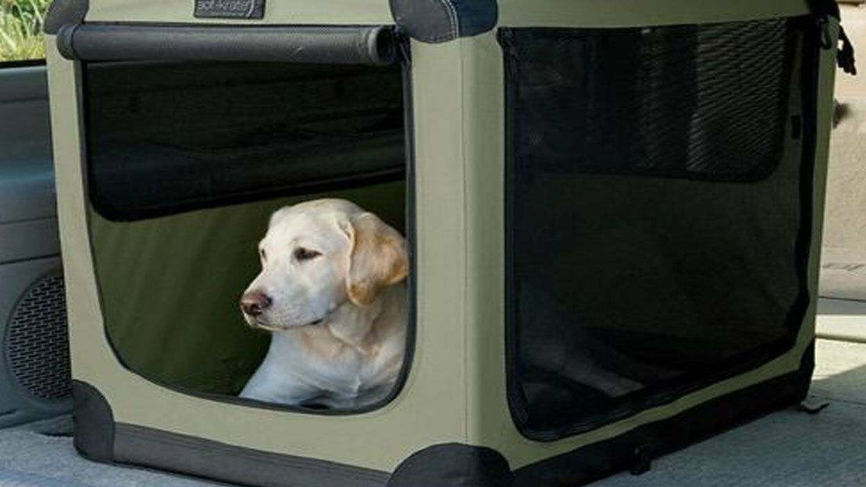 Dog Crates and Cat Carriers