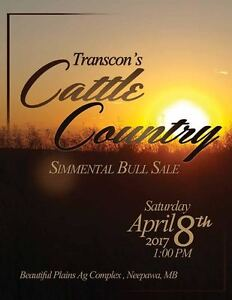 Transcon's Cattle Country Simmental Bull Sale, Sat. Apr. 8, 2017