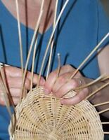 Aboriginal Ash Basketry: Maliseet Tradition
