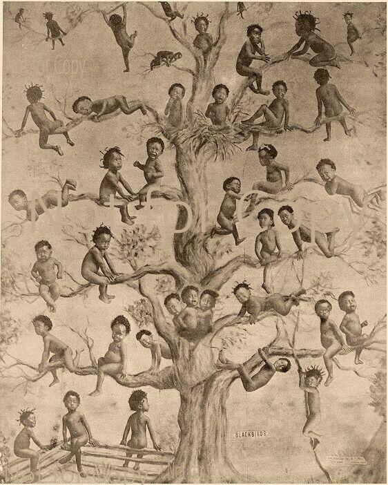 Wm. Bell Blackbirds Print