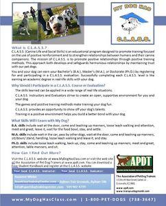 Dog Obedience Classes - 8 weeks - $99 London Ontario image 4