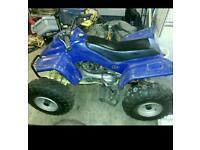 Petrol 100 cc quad bike