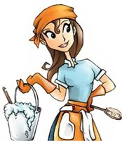 Professional Housecleaner