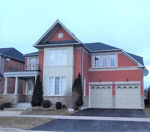 Beautiful Home In High Demand Ajax Montebello Enclave