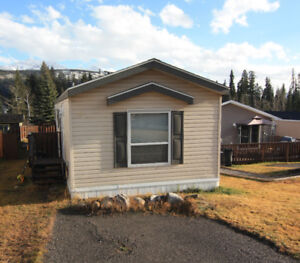 Newer Mobile For Sale - Elkford