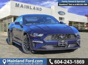 2019 Ford Mustang EcoBoost Coupe 101A