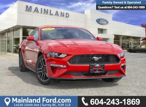 2019 Ford Mustang EcoBoost Premium Coupe 201A