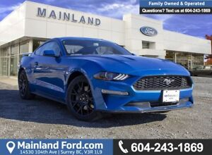 2019 Ford Mustang EcoBoost Coupe 100A