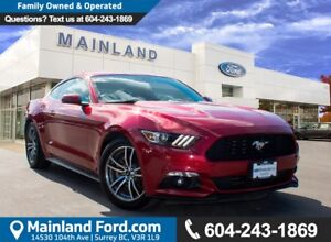 2015 Ford Mustang EcoBoost Premium LOW KMS, NO ACCIDENTS, LOCAL