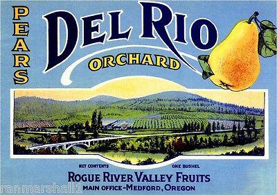Medford Oregon Rogue River Valley Del Rio Pear Fruit Crate Label Art Print