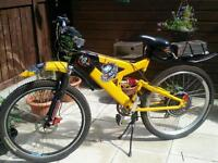 Electric bike mountain Ebike 1000w