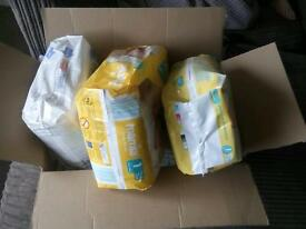 Size 1 nappies
