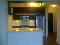 1 Bedroom Luxury Condo Suite for Rent