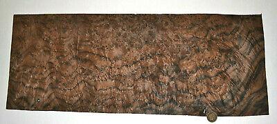 Walnut Burl Raw Wood Veneer Sheets 7 X 19 Inches 142nd Thick  7318-23