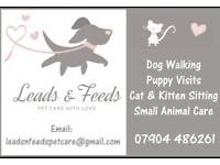 Qualified Dog walker and Pet Sitter.