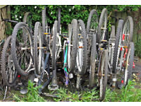 Job Lot of 10 bikes