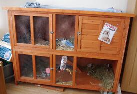Large double decker rabbit hutch