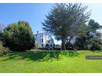 2 bedroom flat in Summerdyne, Chelston, Torquay, TQ2 (2 bed) (#1237393)