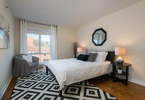 Beautiful 1 Bedroom Apartment for rent in Cote St-Luc!