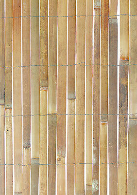 1.2m x 3.8m Bamboo Slat Screen - Garden Natural Screening Roll - Bamboo Fencing