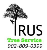 Tree removal services (Free quote)