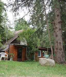Rustic Retreat only 30 minutes from North Bay