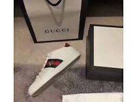 Gucci 🐝