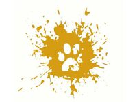 Golden Paws - Dog Walker & Pet care