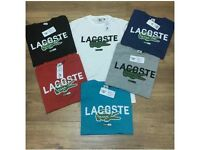 LACOSTE tshirts Available wholesale (OZEY)