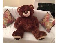 GIANT SOFT TEDDY BEAR! (+3 feet tall)
