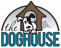 Professional, Affordable Dog Grooming Services