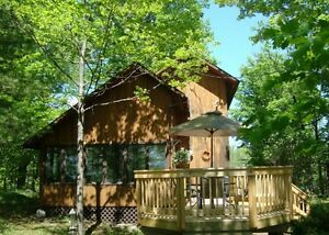 Lakeview Ski chalet for rent cottage Calabogie  -max 6 Adults