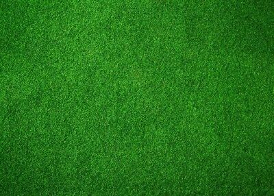 Football Field Background (7x5FT Football Field Photography Backdrops Green Grass Photo Background)