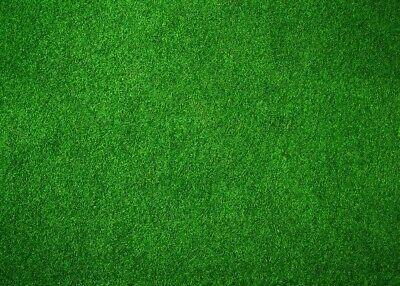 7x5ft Popular Green Grass Photo Backdrops Football Background Studio Props-Nice - Football Photo Props