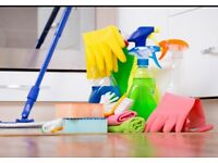 **Experienced Cleaner - Available to Help**