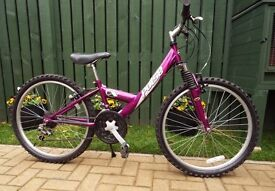 Girls bicycle, purple.
