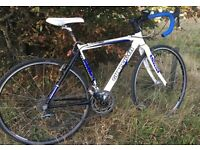 Stolen white cross bike