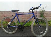 Raleigh stratos mountain bike