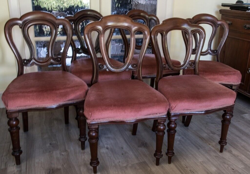 Antique Mahogany Dining Chairs set of 6 - Antique Mahogany Dining Chairs Set Of 6 In Chelmsford, Essex Gumtree