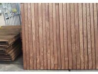 Feather Edged Fence Panels