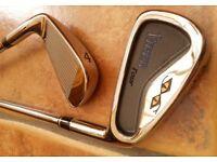 Snake Eye Golf Clubs