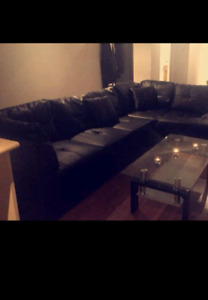 One bedroom basememt apartment