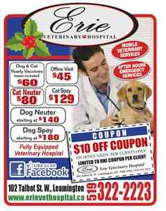 Erie Vet Leamington: Now providing House Calls.