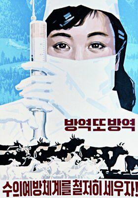 North Korea Original Propaganda  Prevention  Veterinary System Prevent Disease