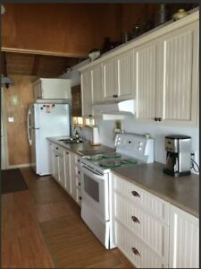 Kitchen w/ Appliances- PRISTINE CONDITION