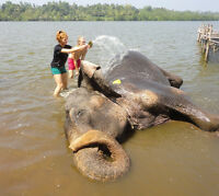 Volunteer Trip to Sri Lanka
